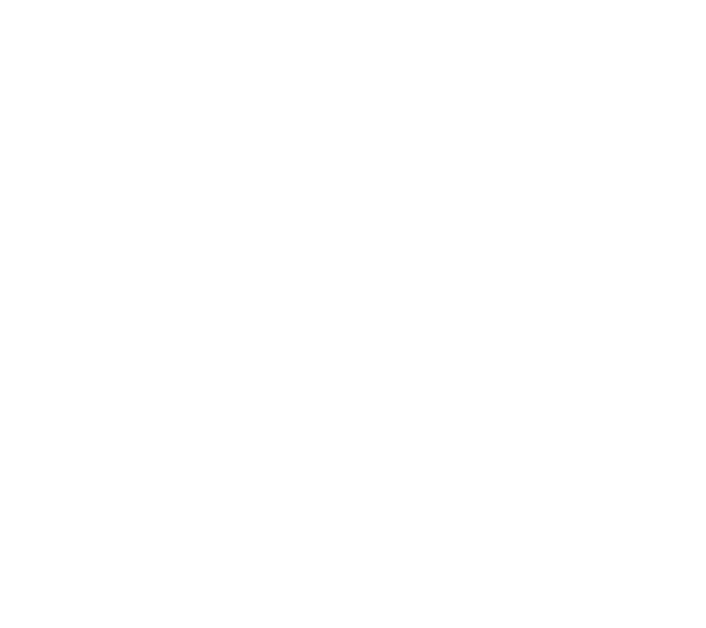 Neuman K-9 Academy - Professional Dog Training in MN