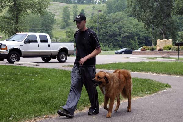 Bob - Boot Camp Dog Training