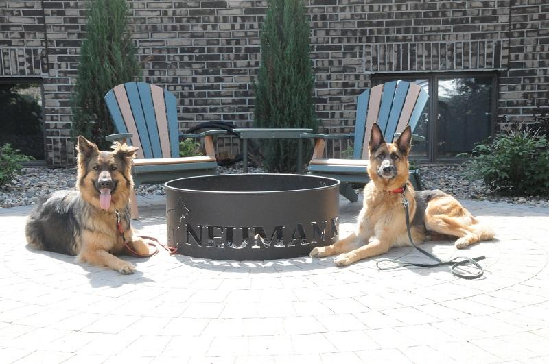Basil & Baron - Boot Camp Dog Training