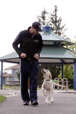 Josiah Neuman, Professional dog trainer working with a Yellow Lab