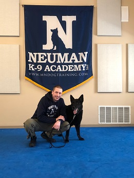 Josiah Neuman, Professional dog trainer