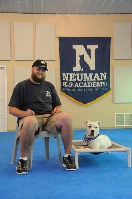 Joe Rudie - Dog Training Assistant