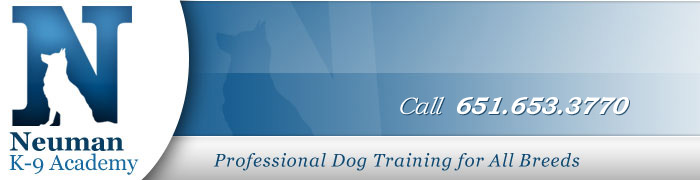 Minnesota Dog Training
